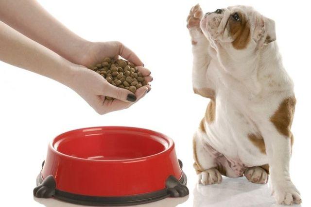Корм для собак АВВА отзывы ветеринаров, разбор состава
