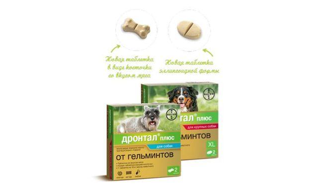 Дронтал для собак инструкция, применение дронтал плюс для собак, цена, отзывы