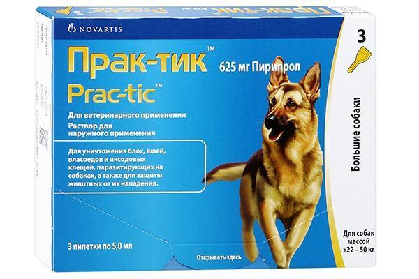 Капли от клещей и блох для собак на холку: рейтинг лучших, как выбрать, инструкция, отзывы