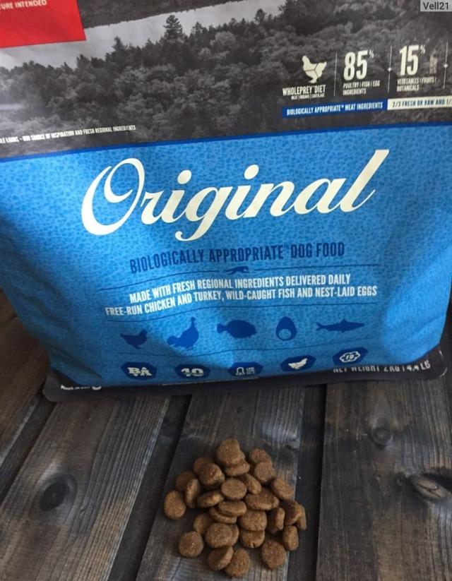 orijen корм для собак: виды, норма кормления, отзывы ветеринаров
