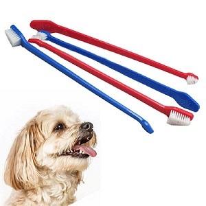 Как правильно чистить зубы собаке в домашних условиях