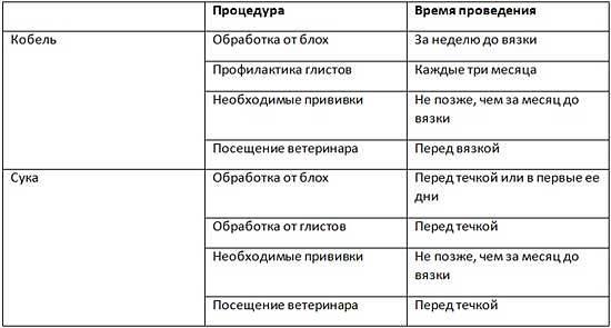 Вязка мопсов (случка): на какой день и инструкция