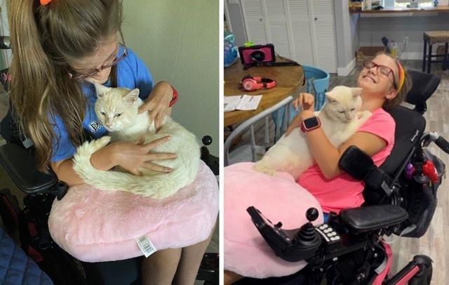 Выросли вместе и стали друзьями: история кота Токо и его маленькой хозяйки