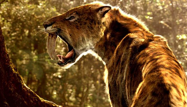 Как охотятся Львы. На примере Кота Шерлока и мух.