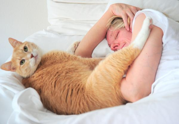 3 причины, почему ваш кот должен спать вместе с вами