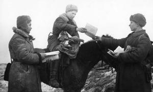 Как использовались кошки советскими солдатами во времена Великой Отечественной Войны