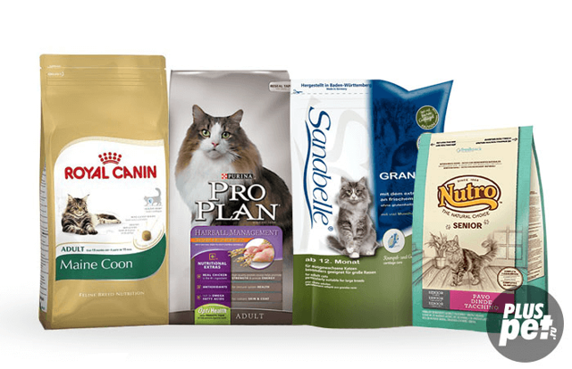 4 класса кормов для кошек: какие бывают, что выбрать владельцу