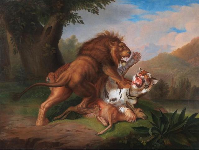 Кто сильнее, тигр или лев: сравнительный анализ