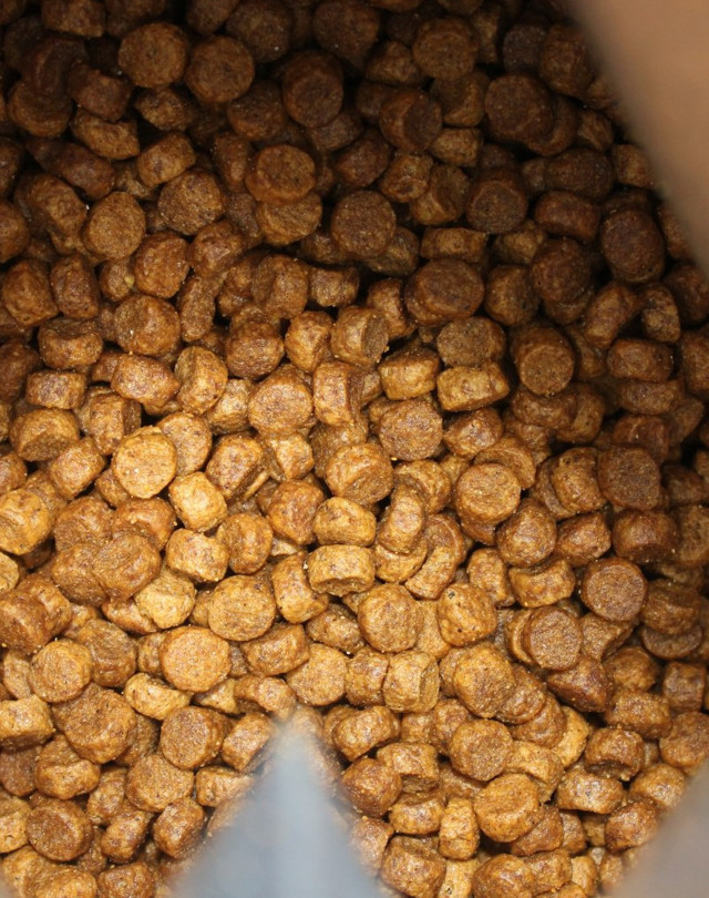 almo nature (Альмо Натюр) для кошек: обзоры корма в таблицах, цена