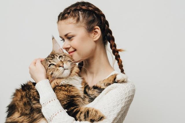 Кошечка-сфинкс спасает девушку от одиночества