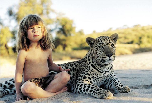 Что нового Кот Шерлок узнал о своих братьях, Львах. Об охоте диких зверей.